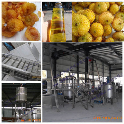 SS304 10 طن كاملة في اليوم Cili Fruit Juice Line Line 380V / 220V Voltage